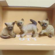 Dolls House Miniature Kittens x3 (XZ570)